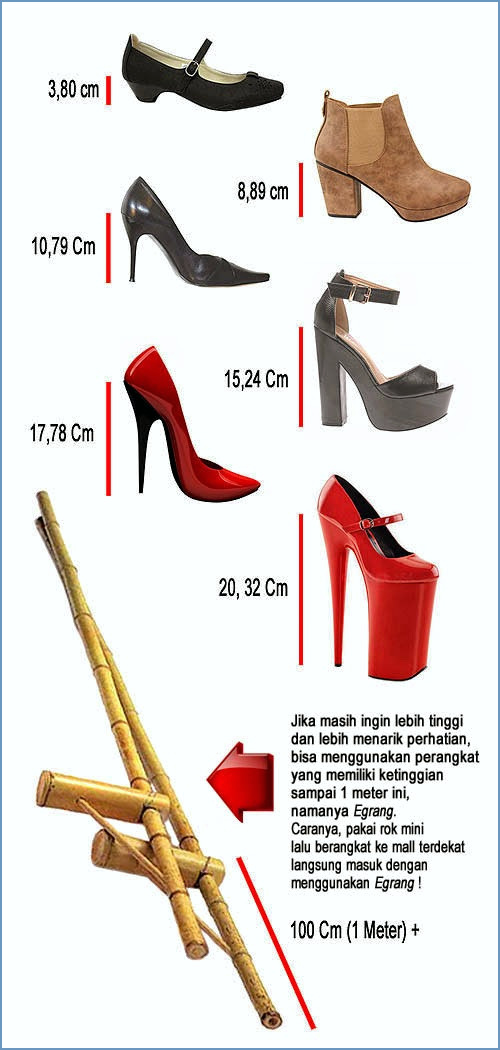 28 02 berapa ukuran tinggi hak sepatu wanita dari Sepatu High Heels Wanita